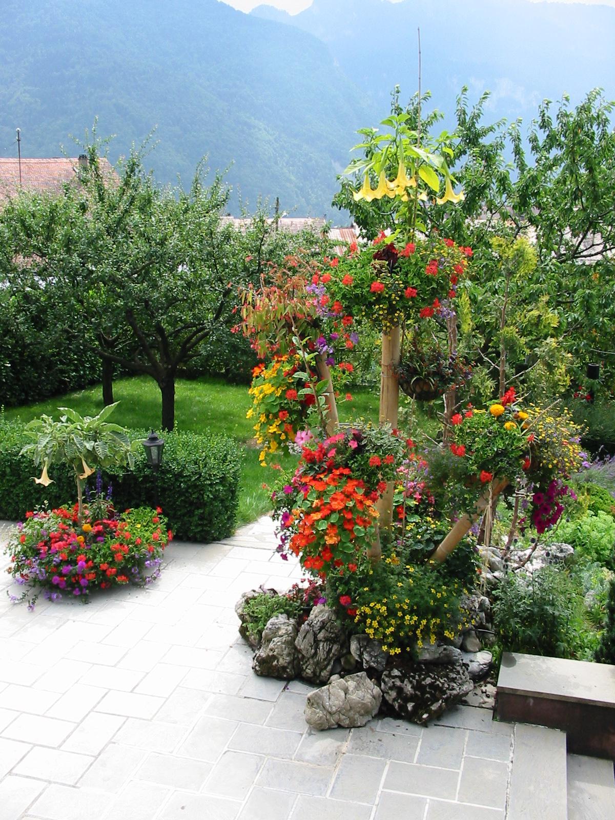 Planter Dans Un Talus plantation d arbres, arbustes, haies, fleurs. vente de